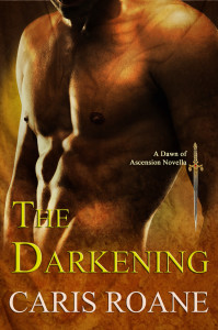 the darkening_bevel