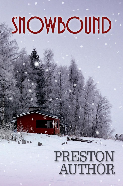 Snowbound premade book cover